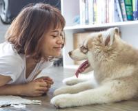 Πρέπει να μιλάτε στον σκύλο σας;